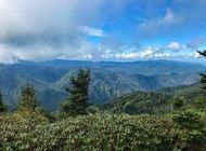 Three Favorite Day Hikes in Great Smoky Mountains National Park
