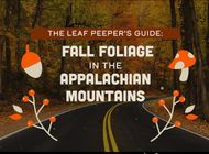 The Leaf Peeper's Guide to Fall Foliage Hikes in the Appalachian Mountains