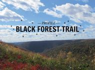 The Black Forest Trail: 43 Miles of Pennsylvania's Beautiful Forests