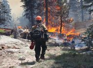 All CA National Forests, Including PCT, Closed Due to Fires