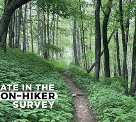 Appalachian Trail Section Hikers: Share Your Experiences with Us!