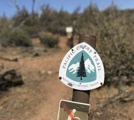 Hiker Dies on PCT Near Paradise Valley Cafe Amid Record Heatwave
