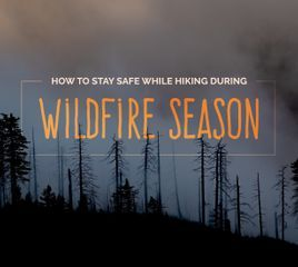 How to Stay Safe While Hiking During Wildfire Season