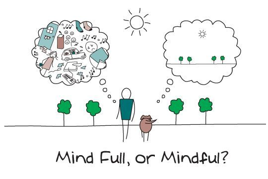 On Health and Being Mindful