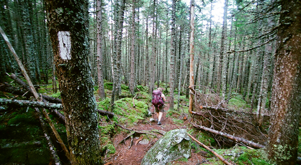 The Long Start to the Journey : How to Support a Thru-Hiker's Incredible Project