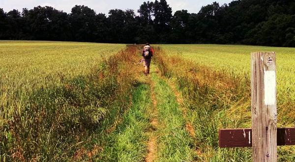 6 Reasons To Thru-Hike the Appalachian Trail Alone