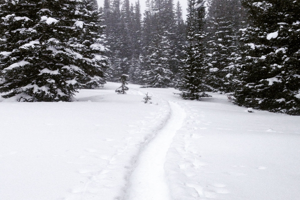 Snowshoeing at Brainard Lake, Colorado