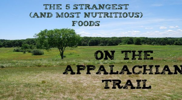 5 Strange (And Very Nutritious) Foods for a Thru-Hike