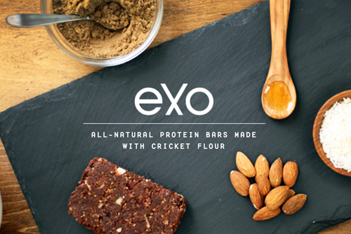 Trail Food: Exo Protein Cricket Flour Bars