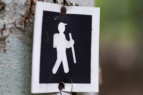 19 Disgusting, Degrading, and/or Hilarious Real-Life Hiker Trash Stories