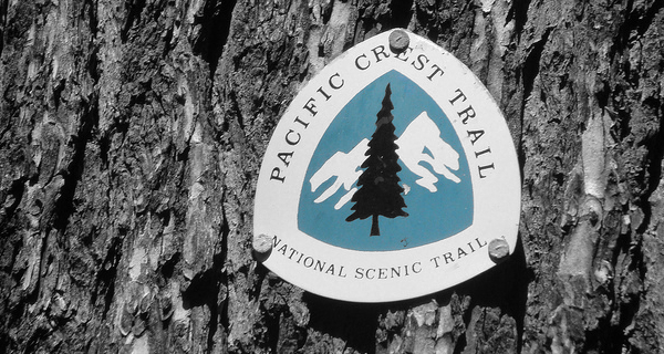 "Amended ""Why I'm Hiking PCT"" A.K.A. Why I Am Already Free, TYVM"
