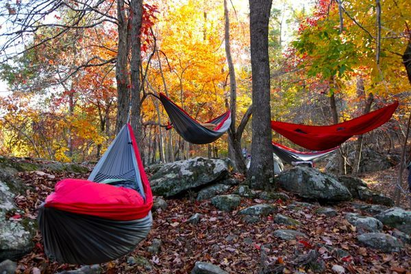 From the Ground to the Trees: Transitioning From a Tent to a Hammock
