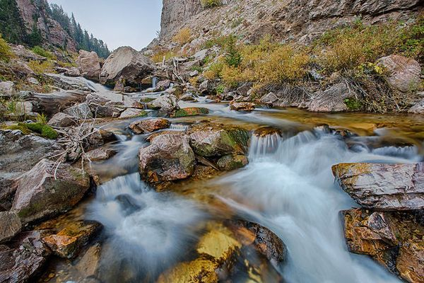 Should You Treat Water in the Backcountry? What Science Says.