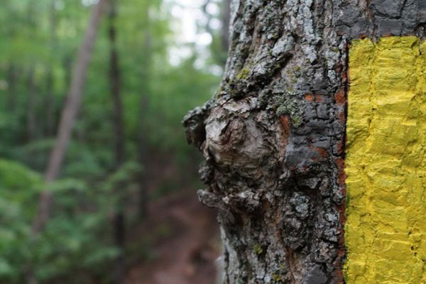 The Ice Age Trail-1000 Miles of Adventure in Wisconsin