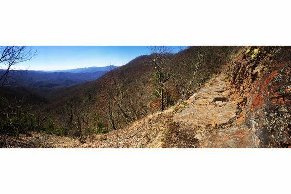 Trail Update 2