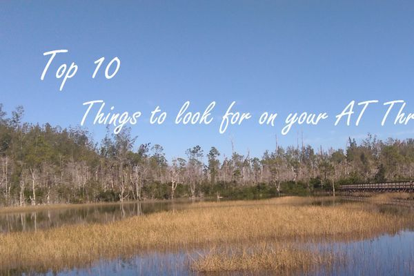 Top 10 Things to Look Forward to on the AT!