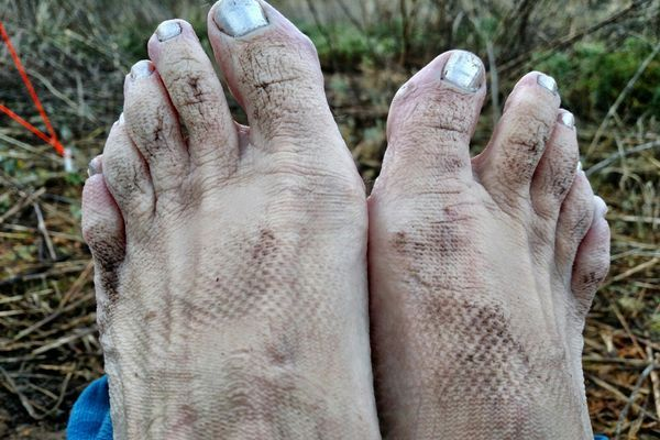 My Next Career Is Toe Wrestling – A Thru-Hike That Ends Before It Starts