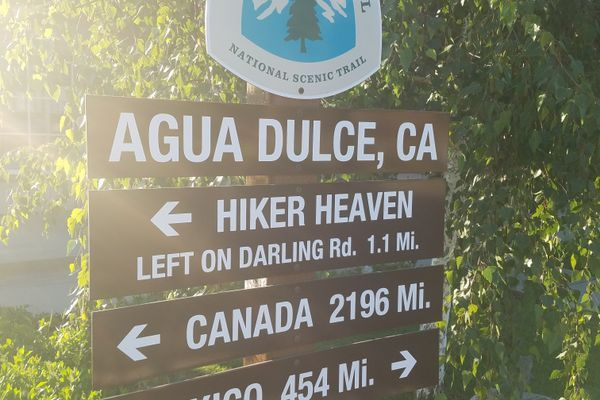 PCT Weeks 2-4 (Mile 454)