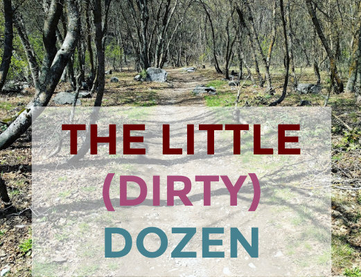 The Little (Dirty) Dozen