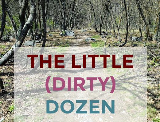 The Little (Dirty) Dozen