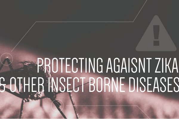 Protecting Agaisnt Zika and Other Insect Borne Diseases