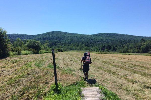 Still Walking South