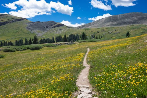 A Photographic Journey of the Colorado Trail