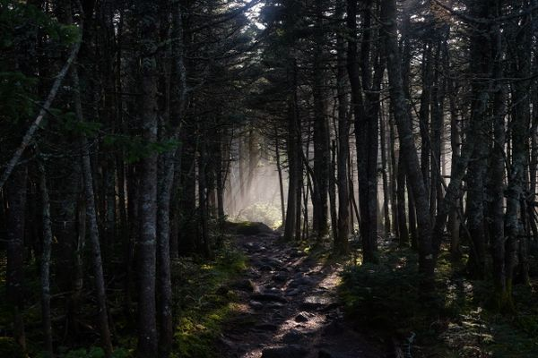 How You Can Help Protect the Appalachian Trail
