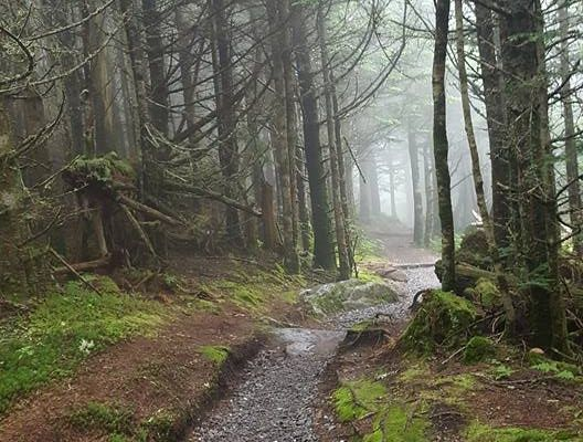 My Reasons for Hiking The Appalachian Trail
