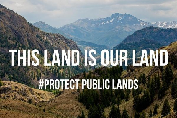 This Land is Your Land… And Yours, And Yours, And Yours