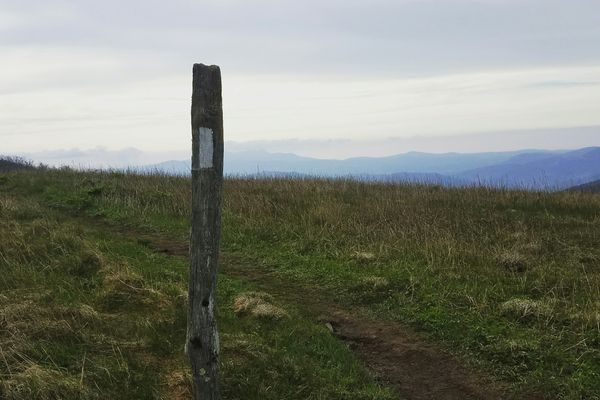 Hot Springs to Roan Mountain Scorecard