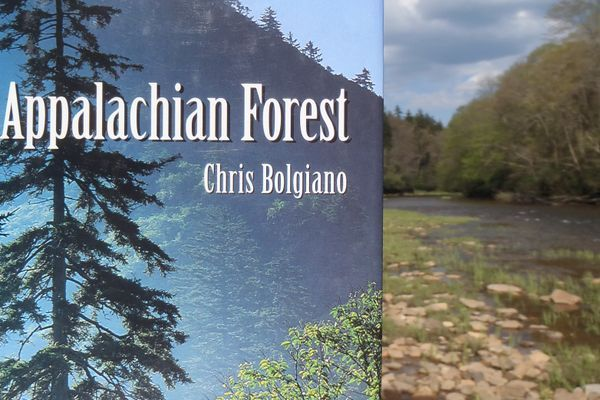 Review of Chris Bolgiano's The Appalachian Forest
