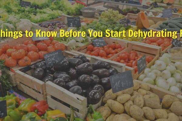 10 Things to Know Before You Start Dehydrating Food