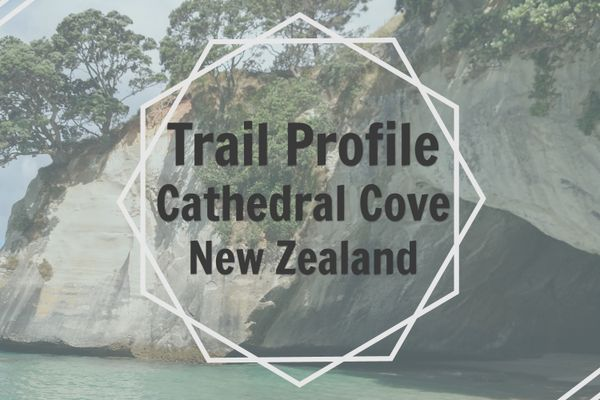 Cathedral Cove: Must-do Beach Walk in New Zealand