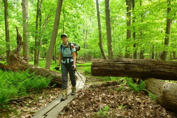 Appalachian Trail Ridgerunner: Dream Job or Not?