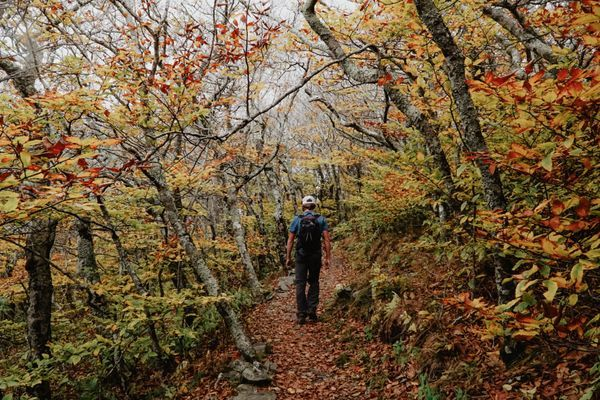 5 Tips For Thru-Hiking on a Budget: It's Possible