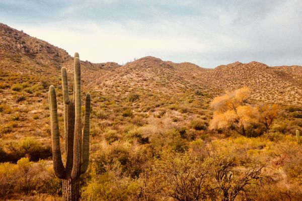 Desert Test: Lessons And Gear That Saved Me