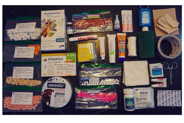 A Peek in Our Packs: A First Aid Kit for Me and My Dog
