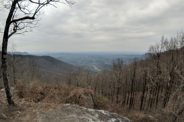 I'm on the Trail: Springer to Woody Gap