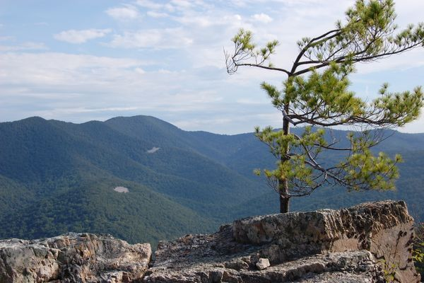 Best Day Hikes in Shenandoah National Park's South District