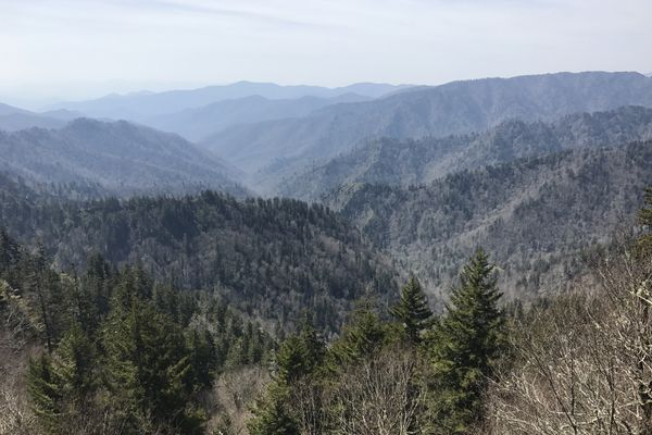 The Splendor of the Smokies