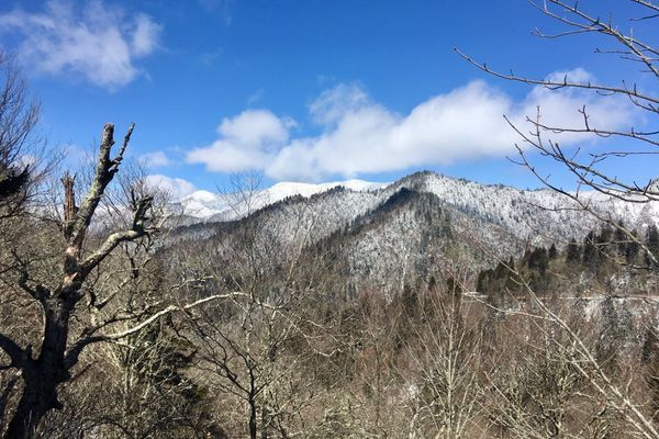 A Novice Emerges Trail Hardened after Snows in Smokies
