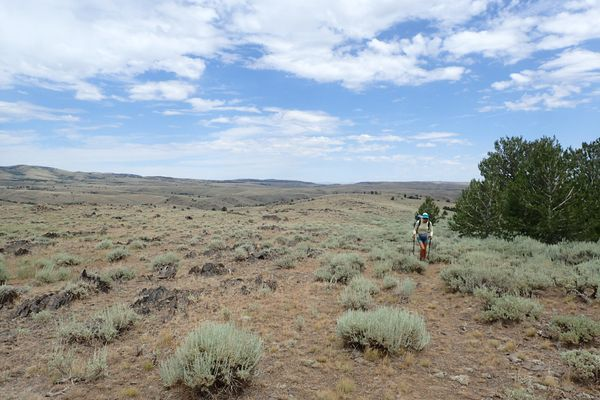 Running Through Wyoming's Great Divide Basin