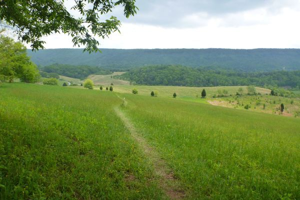 How to Section Hike Virginia II: Pearisburg to Daleville