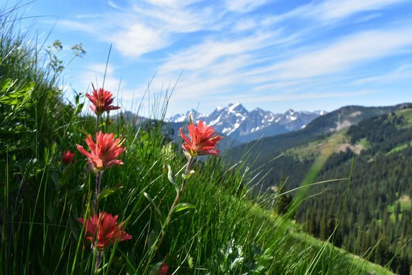 Welcome to the Wild West: Beginning the Pacific Crest Trail