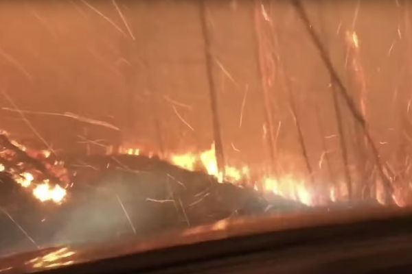 Hikers Survive Driving Through Vicious Wildfire in Glacier National Park