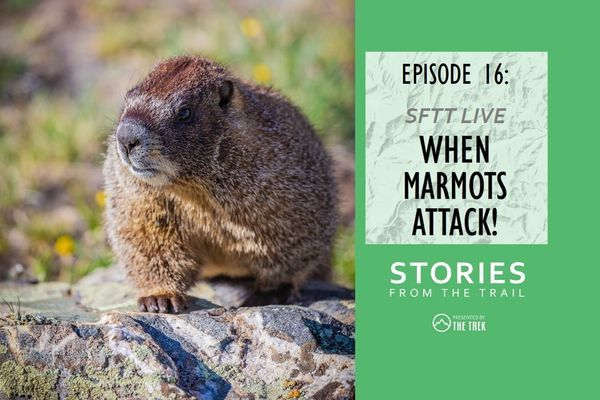 Stories From The Trail Ep 16 – Live! When Marmots Attack!