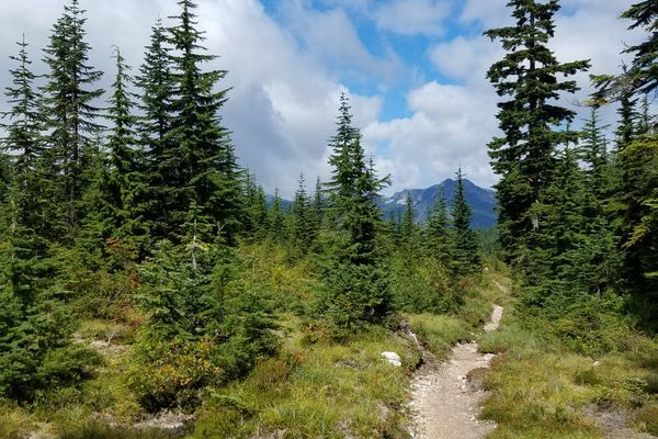 Book Six, Chapter Three – A Place Called Snoqualmie