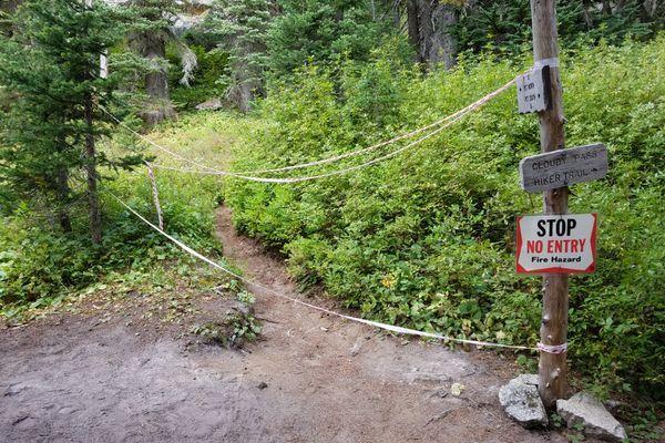 PCT Trail Closure Reduced near Northern Terminus