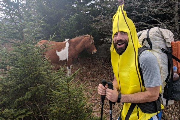 A Banana, a Pickle, and a Hot Dog Walk into the Grayson Highlands…